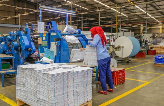 Automated Bag Folding
